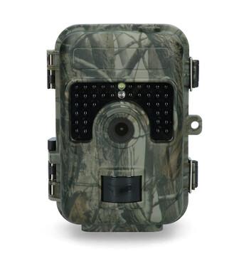 Observatie wild camera