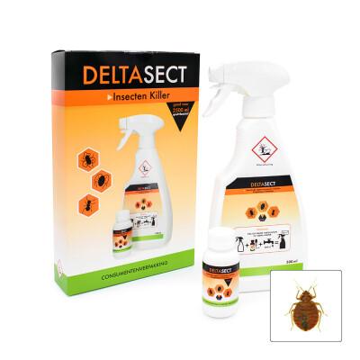 Deltasect spray om bedwantsen te doden